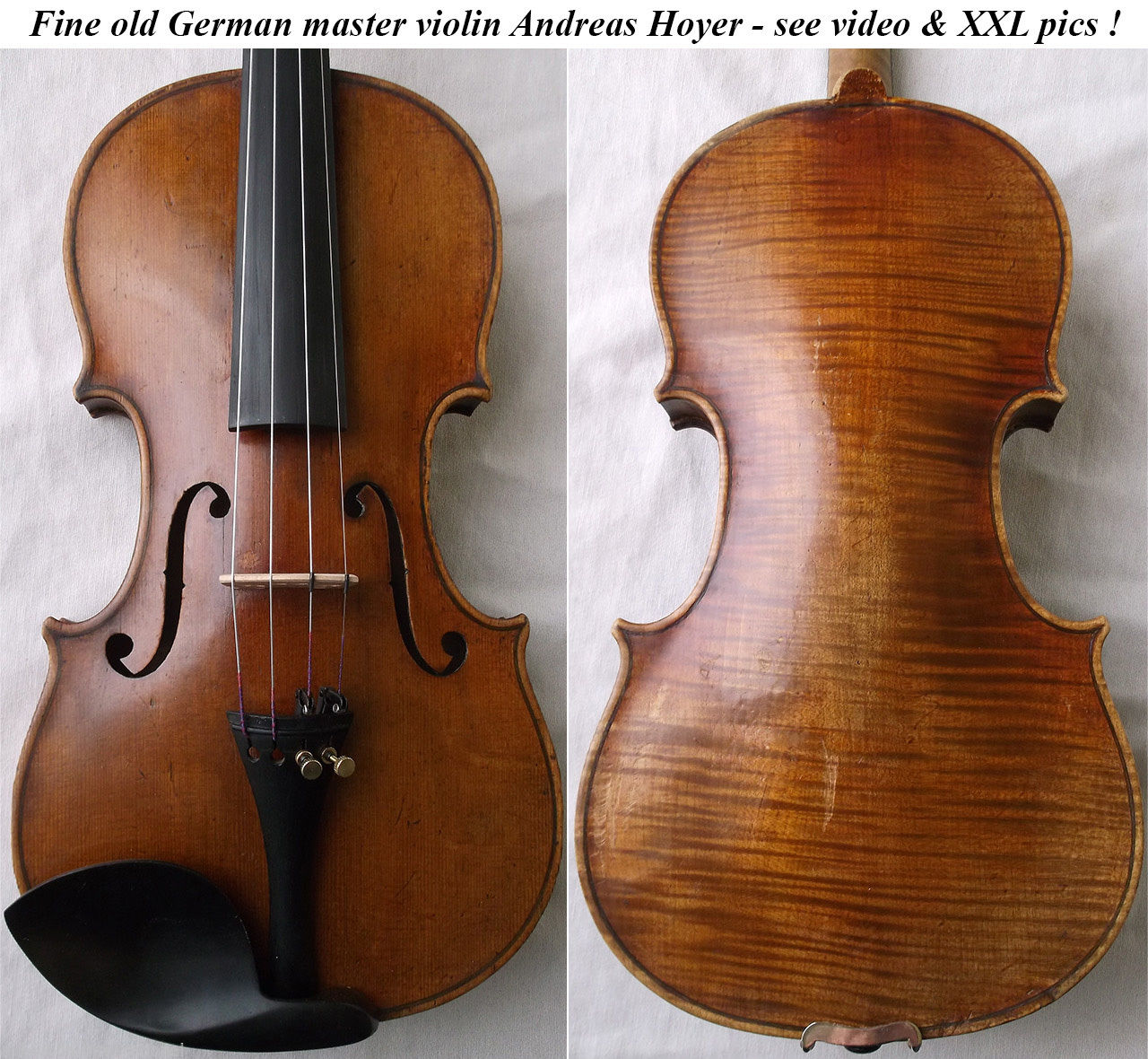 andreas hoyer violin