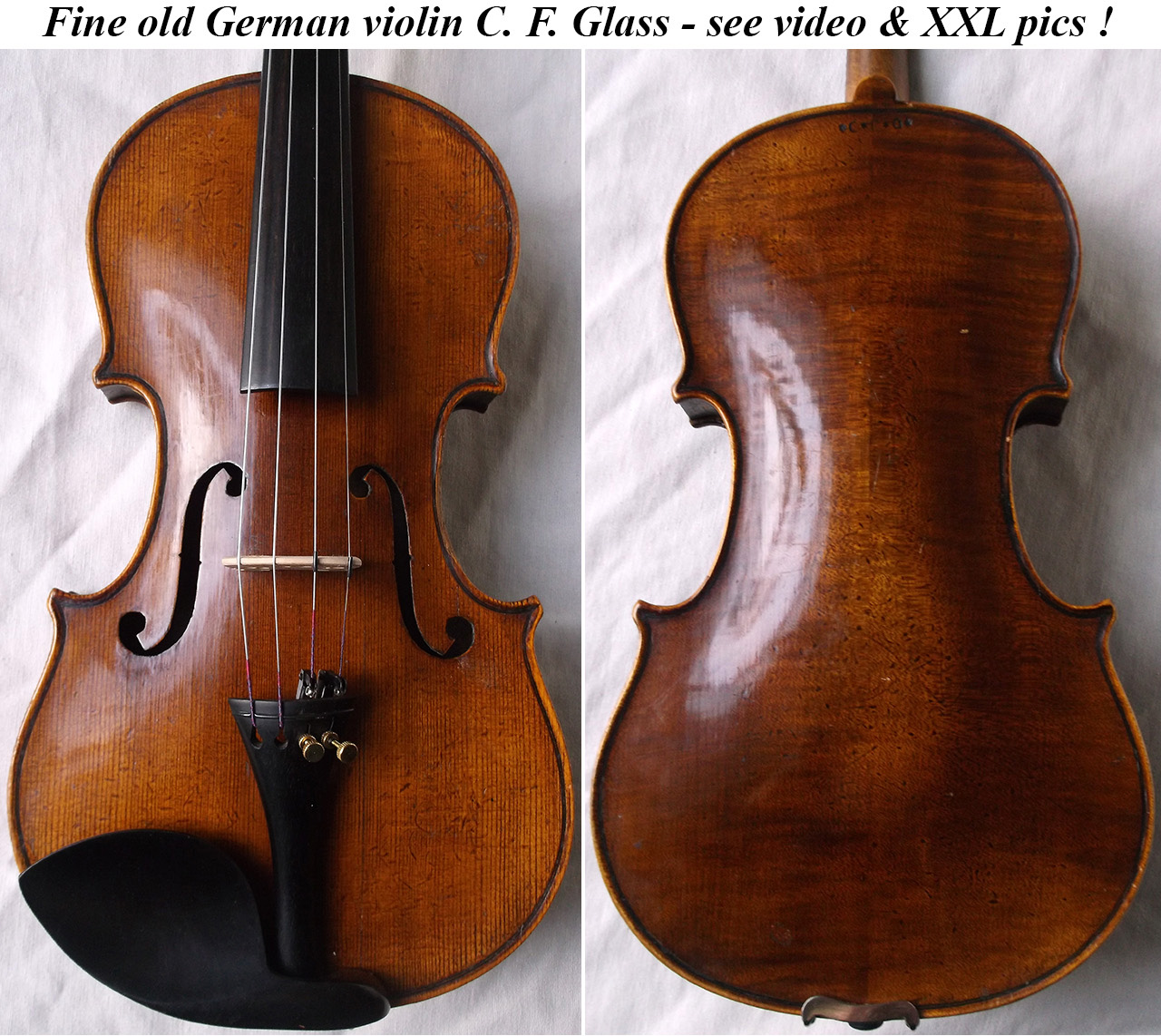 c f glass violin
